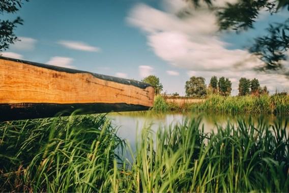 Natuur en Bos opent eerste 'natuuroase' nabij Waaslandhaven