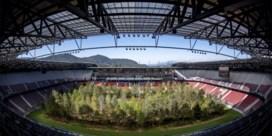 Bos palmt volledig voetbalstadion in