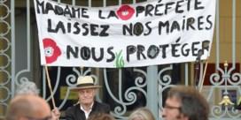 Parijs en vier andere Franse steden verbieden gebruik van pesticiden