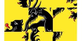 Waarom Vlaanderen niet kan wat Wallonië wel lukt