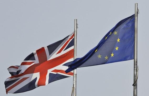 'Harde Brexit rampzalig voor Europees bedrijfsleven'