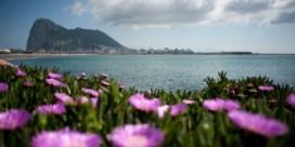 Vervroegde verkiezingen in Gibraltar: 'Zullen sterk bestuur nodig hebben door Brexit'