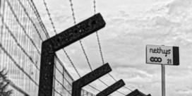 Nethys stak Telenet stokken in de wielen bij bod op Voo