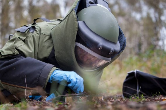 Nederlandse boer stuit op tweehonderd landmijnen in weiland