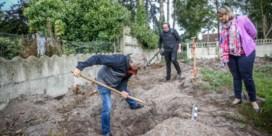 Duitse WOII-soldaat in tuin gevonden in Helchteren