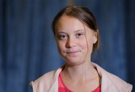 De Greta Thunberg-hulplijn: voor boze volwassenen