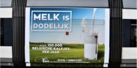 Trams rijden rond met opvallende campagne: 'Melk is dodelijk'