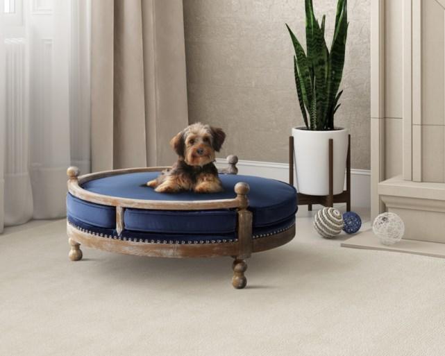 Wanneer meubels voor huisdieren niet vloeken met je interieur