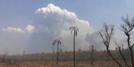 Bosbranden in Bolivia na twee maanden geblust dankzij regen