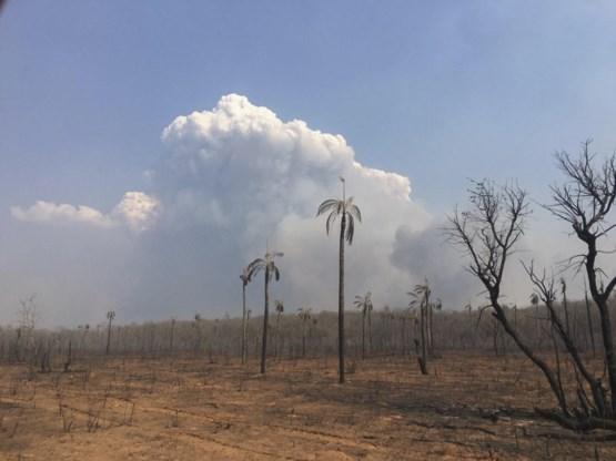 BOS+ start geldinzameling na zware bosbranden in Bolivia