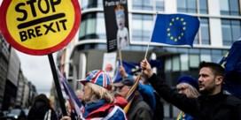 'Uitstel voor Brexit-deal is onvermijdelijk. Helaas'