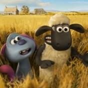 Vliegende schapen