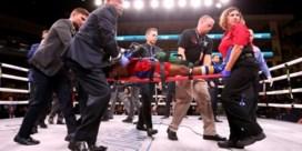 Amerikaanse bokser Patrick Day overleden na knock-out