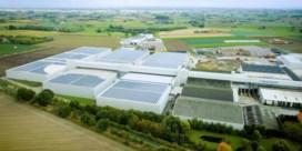13.700 zonnepanelen om groenten te koelen
