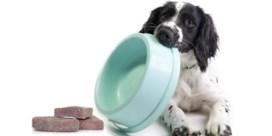 Trendy rauw hondenvoer metbacteriën besmet