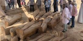 Bijna dertig sarcofagen ontdekt in Luxor