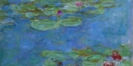De roem, verguizing en herontdekking van de waterlelies van Monet