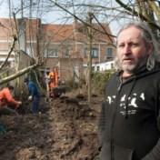 Brugse bomenvriend moet huis verkopen om dwangsom te betalen