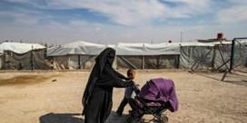 Syrisch wespennest nog complexer