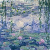 Van muggen en zalmen tot de waterlelies van Monet: de beste boeken van de week