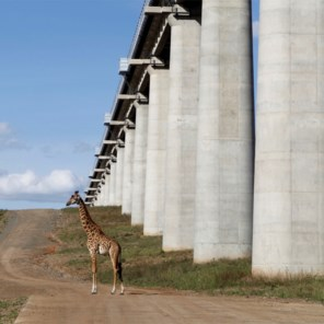 Kenia opent opnieuw spoorlijn dwars door wildpark