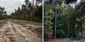 Burgers pikken het niet meer: 'Laat het bos met rust'