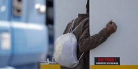 Meereizen in een koeltrailer: een gewisse dood