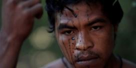 Illegale houtkappers doodden 'beschermer van het Amazonewoud'