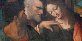 'Zeer waarschijnlijk door Da Vinci'