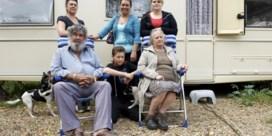 'De woonwagencultuur dreigt uit te sterven'