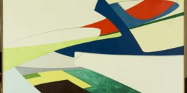 Magrittehuis krijgt museum als buur