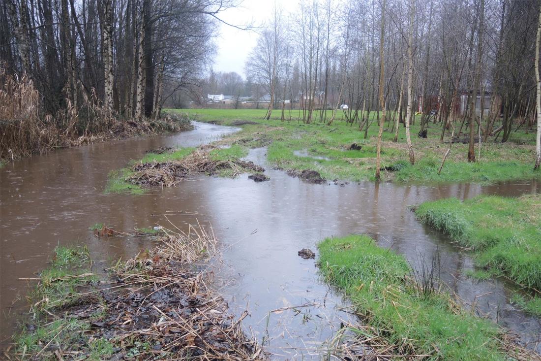 Regenwater drinkbaar maken? Watergroep test het in Harelbeke - De Standaard