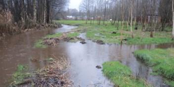 Regenwater drinkbaar maken? Watergroep test het in Harelbeke