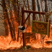 Slotmanche WK rally wordt afgelast door bosbranden in Australië