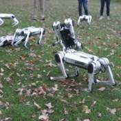 Deze robothonden kunnen nu ook voetbal spelen
