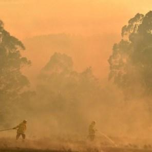 Al 1,1 miljoen hectare verwoest door bosbranden in Australië
