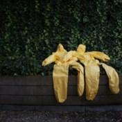 Van ebola zijn we nog lang niet af