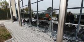 Opgejaagd everzwijn beukt in paniek zevenvensters in bij Ellimetal