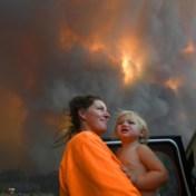 Doemberichten volstaan niet om klimaat te redden
