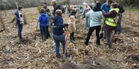 Werknemers van bank planten twee voetbalvelden bos aan
