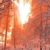 Elektriciteitsleiding middenin besneeuwd Italiaans bos vliegt in brand