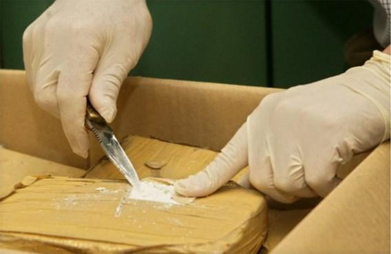 1,2 ton cocaïne tussen limoenen gevonden in Antwerpse haven
