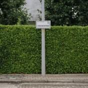 Cyriel Verschaeve: een doodlopend straatje