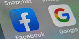 'Facebook en Google bedreigen de mensenrechten'