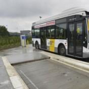 Elektrische bussen van De Lijn staan al twee jaar stil in Brugge