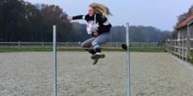 Gezocht: kampioen stokpaardrijden
