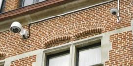 Helft Limburgse koten heeft camerabewaking