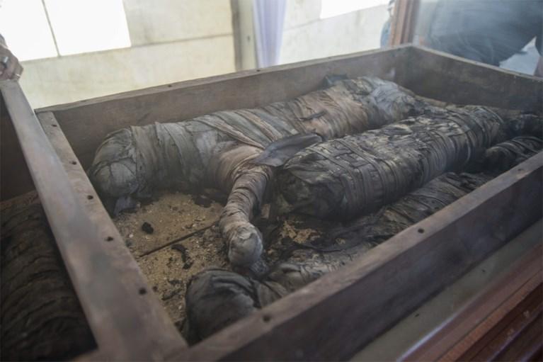Mogelijk voor het eerst gemummificeerde leeuwenwelpjes ontdekt in Egypte