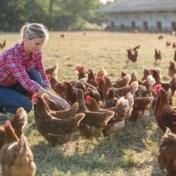 Beter Voor Iedereen: dierenvoeding herbekeken