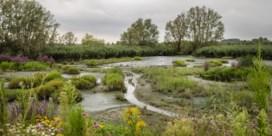 Vlaamse en Nederlandse provincies willen Scheldevallei laten erkennen als Unesco Geopark